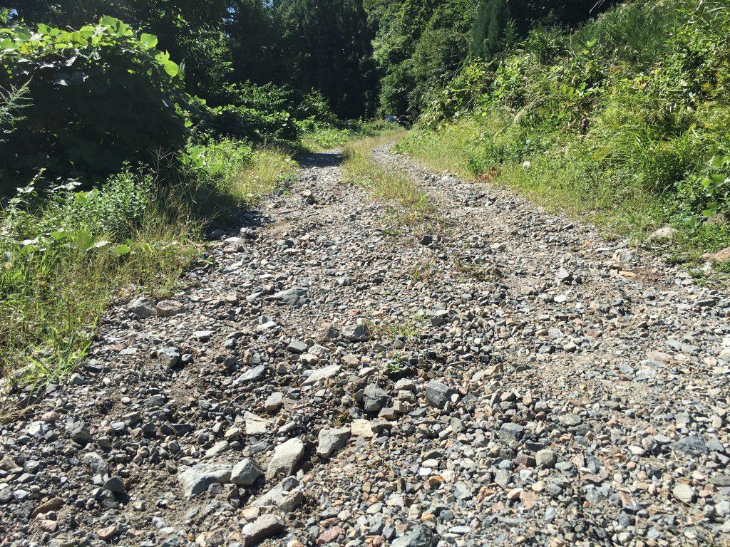 三方崩山登山口への林道の路面状況