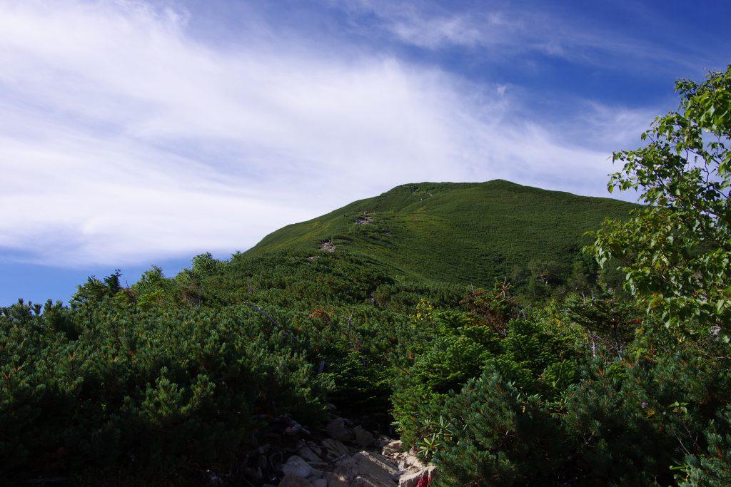 仙丈ケ岳登山道