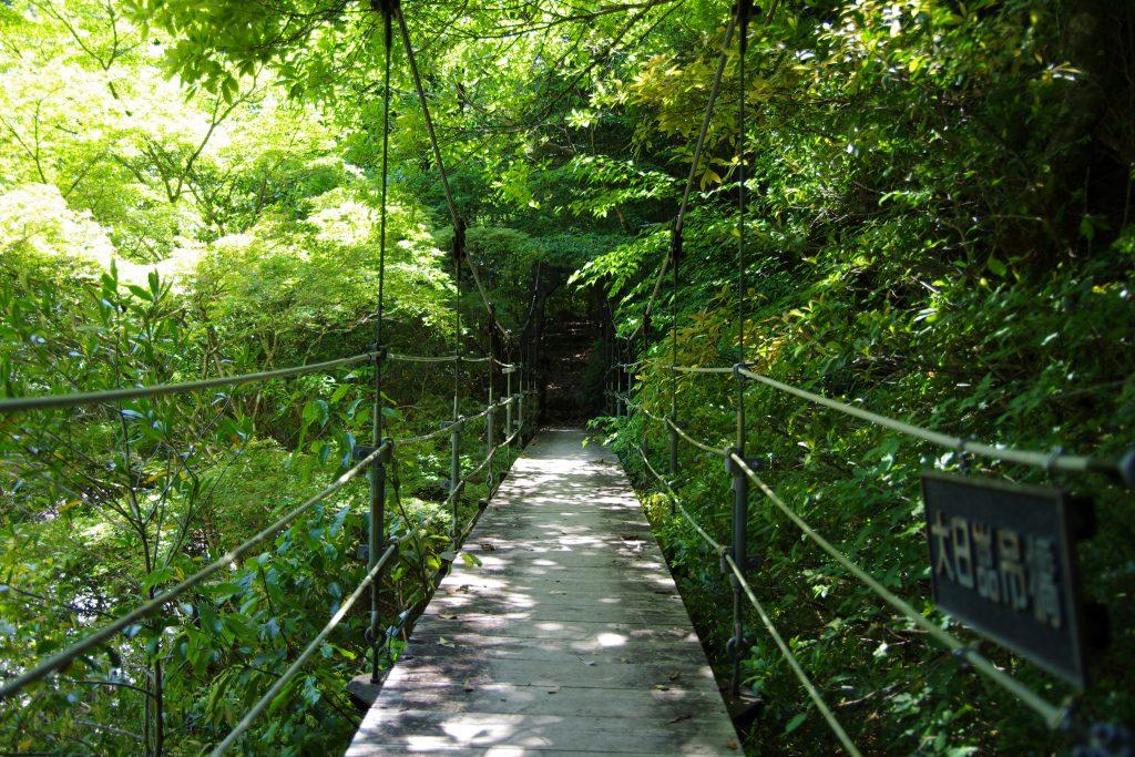 大杉谷_大日嵓つり橋