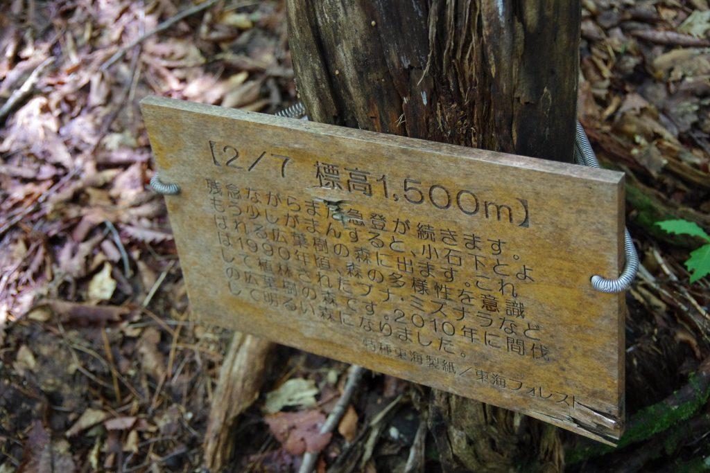 千枚岳 悪沢岳 登山道